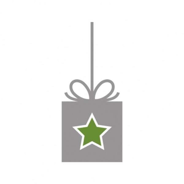 sticker_noel_serie_speciale_cadeau_etoile_2